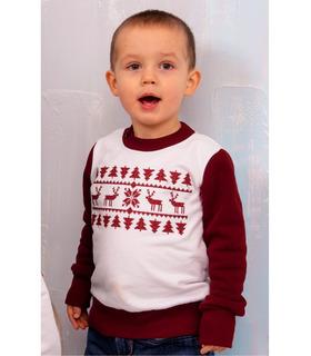 Світшот для хлопчика мод.227