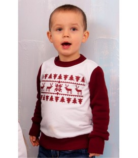 Свитшот для мальчика мод.227