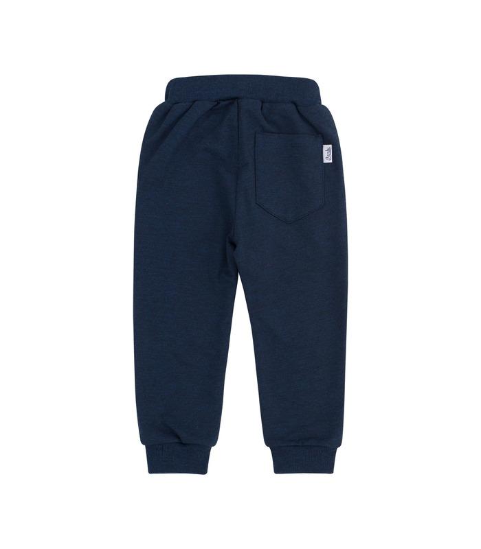 Спортивные штаны ШР579 TS