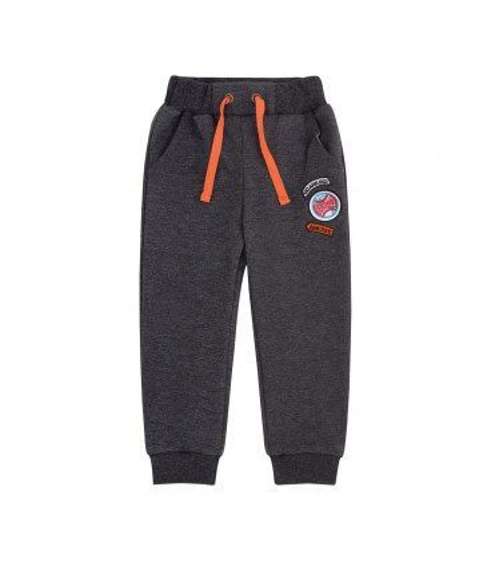 Спортивные штаны ШР579 TG