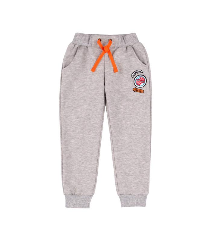 Спортивні штани ШР579 GR
