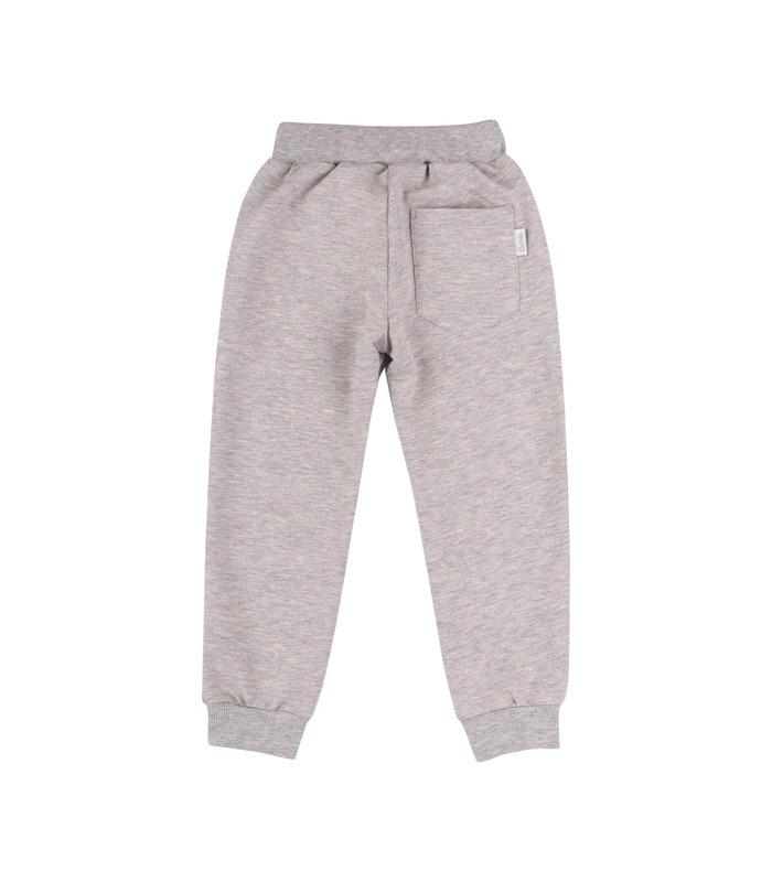 Спортивные штаны ШР579 GR