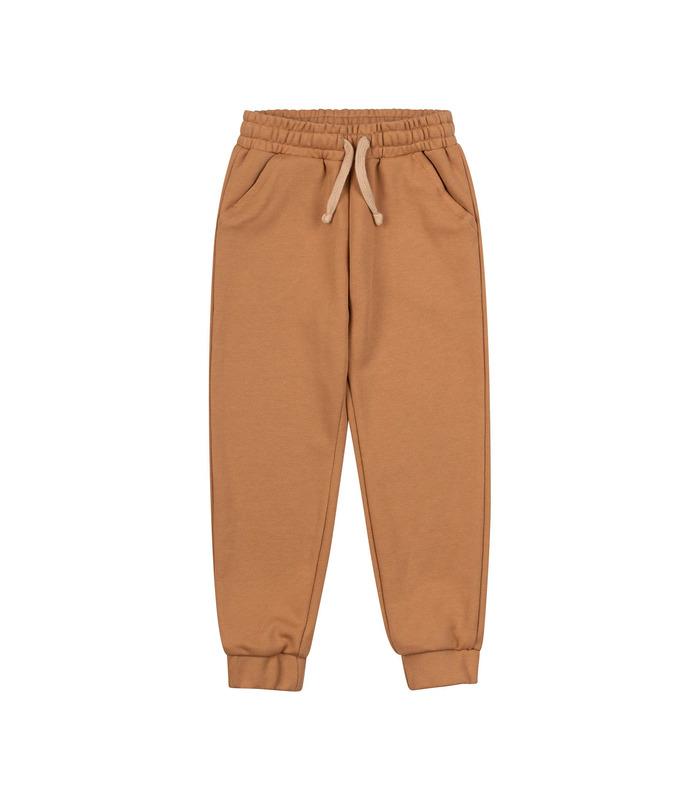 Детские штаны ШР720 BG